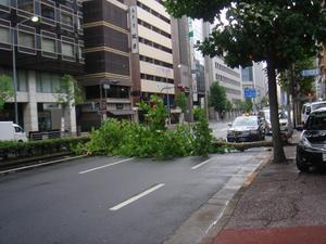 Taifu001